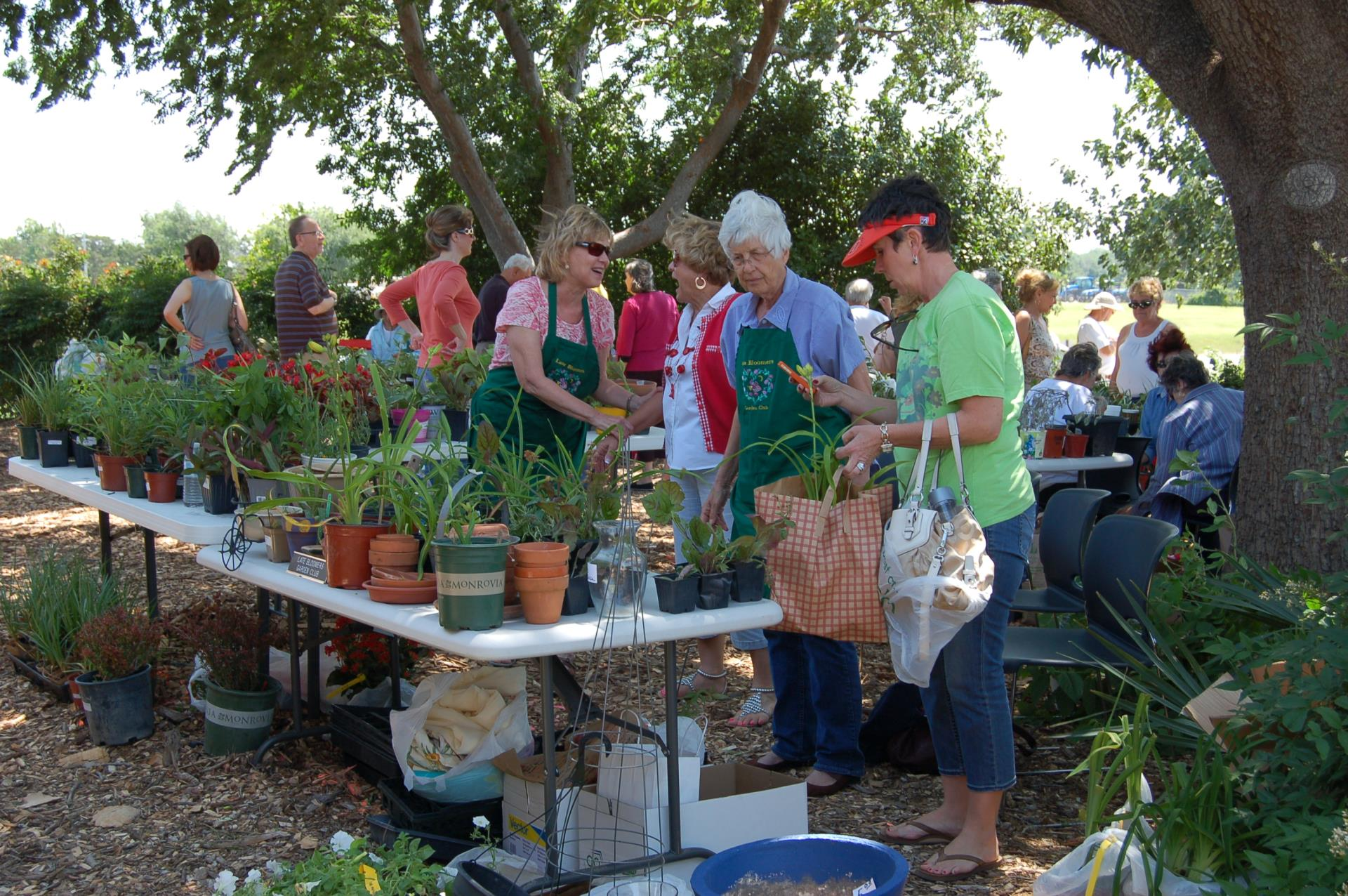 Visitors look at plants during Festival in the Park